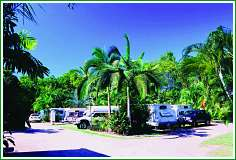 Tropical Hibiscus Caravan Park - Accommodation Guide