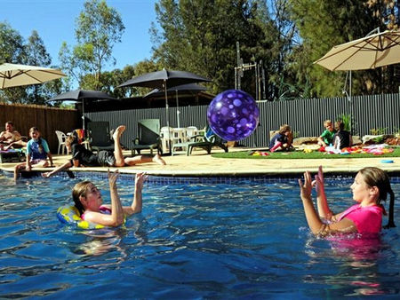 Kingston On Murray Caravan Park - Accommodation Guide