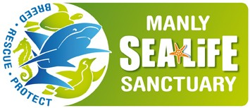 Manly SEA LIFE Sanctuary - Accommodation Guide