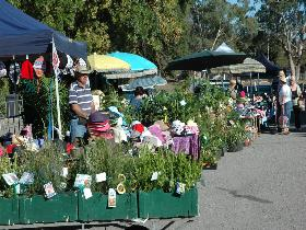 Meadows Monthly Market - Accommodation Guide