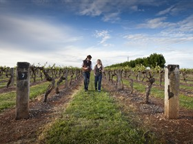 Coonawarra Wineries Walking Trail - Accommodation Guide
