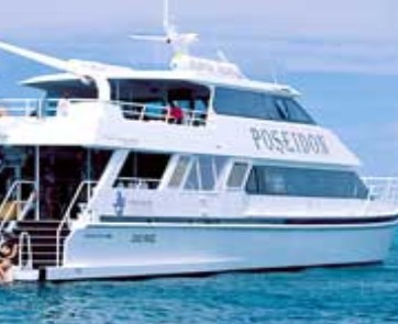 Poseidon Outer Reef Cruises - Accommodation Guide
