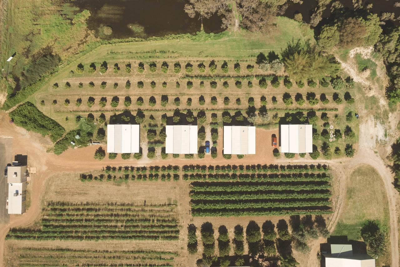 Swan Valley Sisters - Accommodation Guide